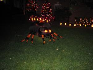 halloween 2013 803
