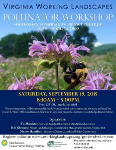pollinator flyer