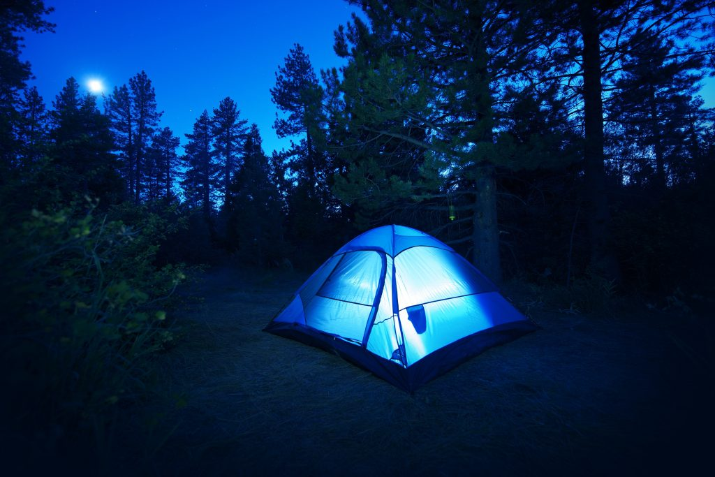 Camp WhompingWillow - 2018 Family Camp Outs